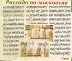 Проращивание рассады «в пелёнках» — Ботаничка.ru