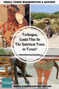 Do you love quirky small towns? Read all about Terlingua, Texas. It's near the edge of Big Bend National Park and full of colorful characters. Usa Travel Guide, Travel Usa, Travel Tips, Travel Guides, Visit Usa, Us Destinations, Texas Travel, Texas Roadtrip, Terlingua Texas