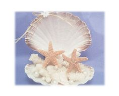 Beach Wedding cake topper Starfish Cake Toppers Seashell accessories island destination theme accessory garter guestbook ring pillow