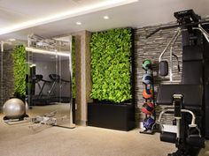 sofitel fitness center - Google Search