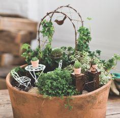 Mini Garden   Lawn & Garden Retailer