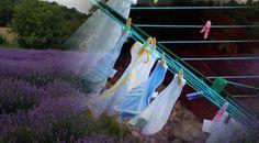 Φτιάξτε σπιτικό μαλακτικό ρούχων με αιθέριο έλαιο λεβάντα και ξύδι