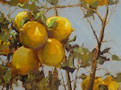 Lemons by Ann Hardy Oil ~ 12 x 16