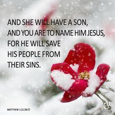 And she will have a son, and you are to name him Jesus, for he will save his people from their sins. - Matt 1:21 #NLT #BIble