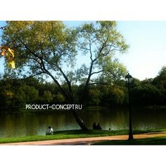 Концепция Продукта. Качественные продукты.: #золотаяосень#природа#красивыеместа#концепцияпроду...