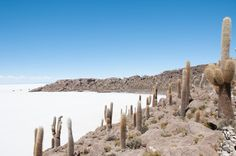 Welcome to Uyuni: the largest salt flat in the world! #BOLIVIA