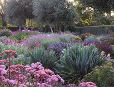 Anyone who lives in Southern California (or anywhere near a desert, for that matter) knows the familiar struggle of trying to keep verdant, usually expensive, landscaping alive when faced with dry heat and watering restrictions. …