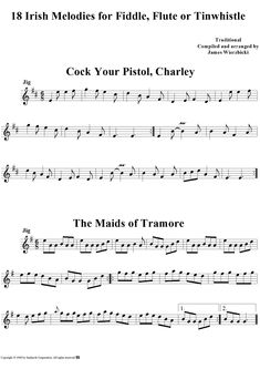 18 Irish Melodies for Fiddle, Flute or Tinwhistle Sheet Music Preview Page 1