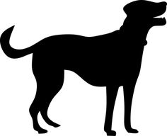 Lacy, Dog, Silhouette, Animal, Look Free Pictures, Free Images, Dog Silhouette, Make A Donation, Mammals, Terrier, Pets, Animal Silhouette, Vector Graphics