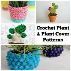7 #Crochet Plants and Covers to Easily Spruce Up Your Space @becraftsy