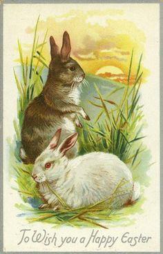 Google Image Result for http://vintageholidaycrafts.com/wp-content/uploads/2009/01/free-vintage-easter-bunnies-overlooking-sunset-greeting-card.jpg