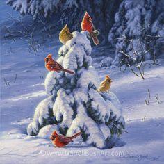 Winter's Gift Darrell Bush
