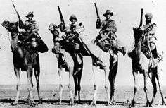 EGYPT PALESTINE 1914 - 1918 (Q 105525)   Guerrilla Operations 1918: The 'Imperial' nature of the Camel Corps in 1918; mounted troops from left to right, the Australian, British, New Zealand and Indian sections.