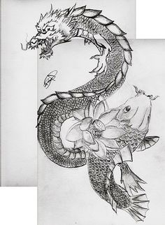 Dragon Koi Fish | dragon and koi fish I drew. I wasn't bothered finishing the dragons ...