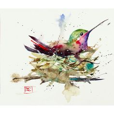 HUMMINGBIRD in NEST, Watercolor Print by Dean Crouser (€28) ❤ liked on Polyvore featuring home, home decor, wall art, ink painting, watercolour painting, watercolor wall art, giclee painting and textured wall art