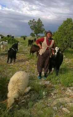 Goat Care, Turkish Men, The Good Shepherd, People Of The World, World Cultures, Beautiful Eyes, Country Life, Picture Video, Goats
