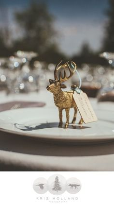 diy place card holdersname tags for place settings gold spray painted plastic animals with names written on a wooden and tied with ribbon