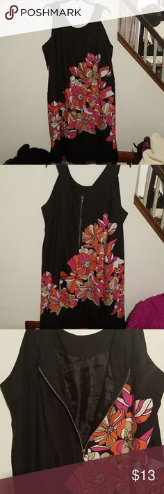 Lane Bryant dress Excellent condition no flaws pets or smoke zipper back fully functional this dress is lined and its 100% cotton this size is 24 and if it's more like a 22 there is no stretch Lane Bryant Dresses