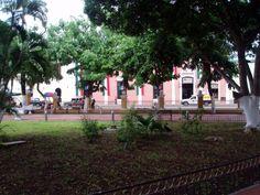 Plaza Francisco Cantón Valladolid 1689221