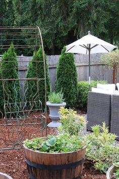Backyard Tour - The Inspired Room - Evergreens