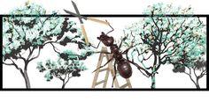 hormigas cortadoras