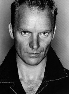 Sting...the thinking woman's man. Agreed!