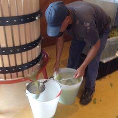 Reditus Farm Wine Making