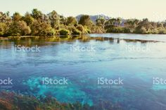 Te Waikoropupu Springs, Takaka, Golden Bay, New Zealand royalty-free stock photo Bay News, Water Sources, Open Up, Image Now, Celine, New Zealand, Royalty Free Stock Photos, Sky, Cold