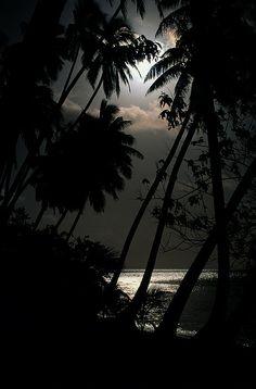 A Fiji Island Sunset. I will take my own sweet self on day