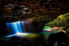 Loved this place! Glow worm Cave in Springbrook National Park, Queensland, Australia. At night, the worms that live in the ceiling of the cave glow fluorescent!