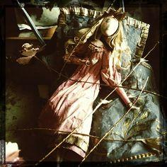 Les Carnets de MissClara: La Belle au Bois Dormant, suite (Sleeping Beauty)