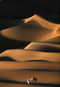 Races of cars, bikes, camels and even falcons are all part of the annual Liwa Moreeb Dune Festival in the Liwa about 150 miles West of Abu Dhabi Desert Photography, Desert Design, Fun Deserts, World Pictures, Desert Pictures, World View, Natural Scenery, Sand Art, Travel Inspiration