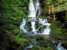 canadian waterfalls | ... , Canada. Waterfalls at Fundy National Park in New Brunswick, Canada