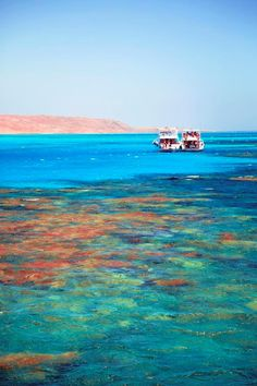 Red Sea - Egypt #places
