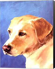 - Description - Why Accent Canvas? This exquisite Dog Portrait-Yellow Lab Animal Canvas Wall Art Print by Jill Sands is created using quality fade resistant inks on a premium cotton canvas to ensure d Canvas Wall Art, Wall Art Prints, Animal Art Projects, Watercolor Animals, Fauna, Dog Portraits, Animal Paintings, Dog Art, Illustration Art