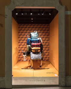 """LA RINASCENTE, Via Del Tritone, Rome, Italy, """"Not Tested On Animals-Handle Without Care"""", luggage/photo by Crash Baggage, pinned by Ton van der Veer"""