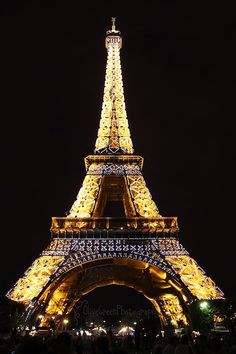 Eiffel Tower. I didn't go up it, but I DID do a cute little dance under it. Love it at night when it sparkles.