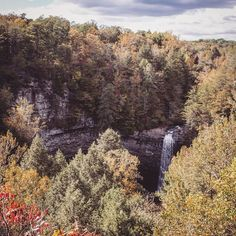 Beautiful Fall foliage at Foster Falls State Park. Check out the Fiery Gizzard Trail by clicking the link in our profile! #theonlytennisee #liveadventurously #findyouradventure #offthebeatenpath #wanderlust #hiking #backpacking #explore #getoutside #camping #yonder #waterfall #trail #travel #adventurelocal by overland_and_sea