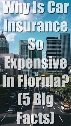 Why Is Car Insurance So Expensive In Florida? Best Car Insurance, Fort Lauderdale, Florida, Facts, Blog, Ideas, The Florida, Knowledge
