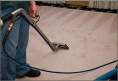 Get a spotless carpet with our Professional Carpet Cleaning Services in London. Our Carpet Steam Cleaning in Bromley & Croydon will revitalise your carpet. Steam Clean Carpet, How To Clean Carpet, Diy Cleaning Products, Cleaning Solutions, Cleaning Services, Cleaning Contractors, Duct Cleaning, Cleaning Hacks, Floor Cleaning