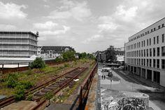 https://flic.kr/p/sXJQkJ   green mile   Ein Grünstreifen in Mülheim an der Ruhr