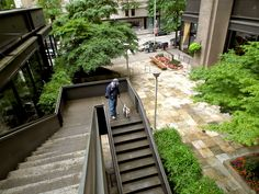 If stair climbing is your thing, Seattle is the place for you! Our hilly terrain lends itself to stairs everywhere. Stair Climbing, Seattle Times, Sidewalk, Stairs, Boat, Places, Stairway, Dinghy, Staircases