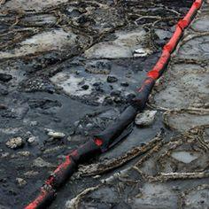 oil drilling in alaska essays