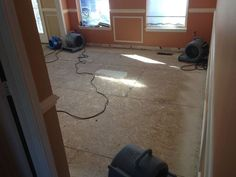 Dna Fresh Carpet Cleaning Restoration Sevice In Virginia