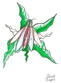 Psy fly, mosca psicodélica, mosquito, ente, ser, voador, voladores