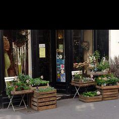 Flower shop, Paris. into the wooden boxes for flowers.