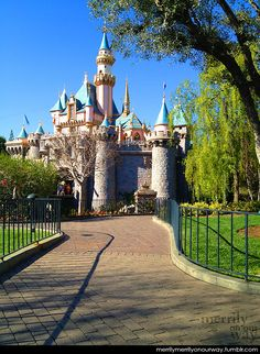 I miss Disneyland so much.