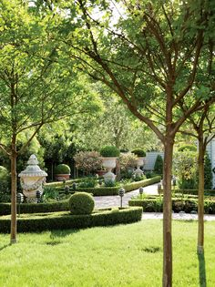 Structured boxwoods and antique French and Italian urns in the formal gardens by landscape architect Robert Truxell of Fresno.