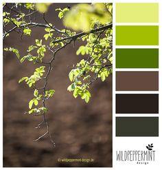 Farbpalette, Farbinspiration, Frühling, hellgrün, grün, braun, frisch / © wildpeppermint-design.de