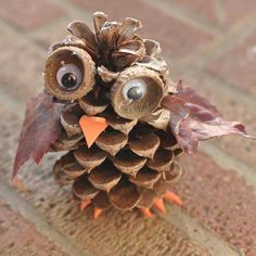 DIY Pinecone Owl by broogly: These adorable pine cone owls are a fun autumn craft for kids of any age. You can combine this craft with a nature hike to find the pine cones, acorn cups and leaves used in the activity. Acorn Crafts, Owl Crafts, Adult Crafts, Primitive Crafts, Halloween Crafts, Holiday Crafts, Pinecone Owls, Fall Crafts For Kids, Craft Ideas